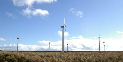 scotland wind