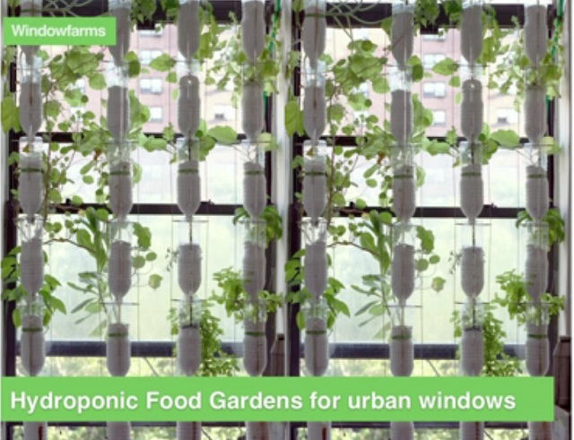 Yes We Can Grow Your Own Food In Indoor Garden Even A Small Apartment Red Green And Blue