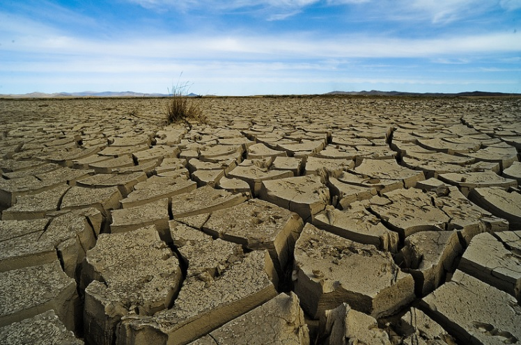 climate change choke points drought food supply