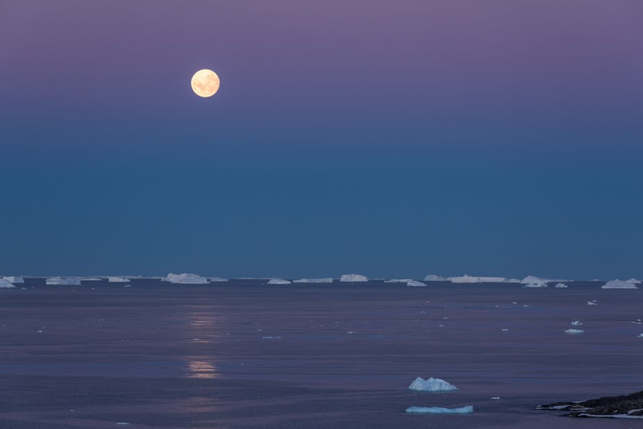 antarctic sea ice