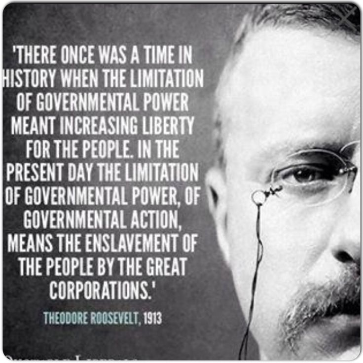 Teddy Roosevelt - smart regulation vs robber barons