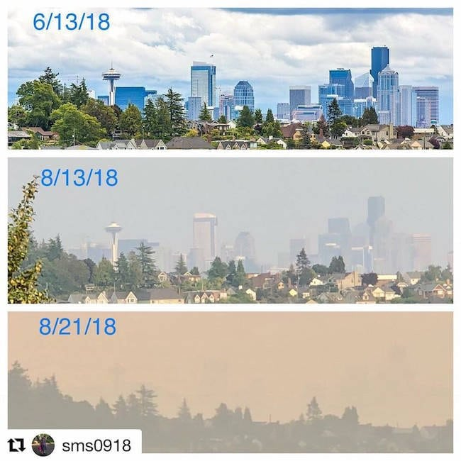 smoke from wildfires turns seattle's skies to grey
