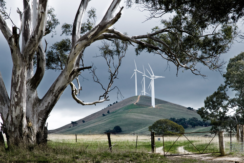 Renewable energy Australian wind farm