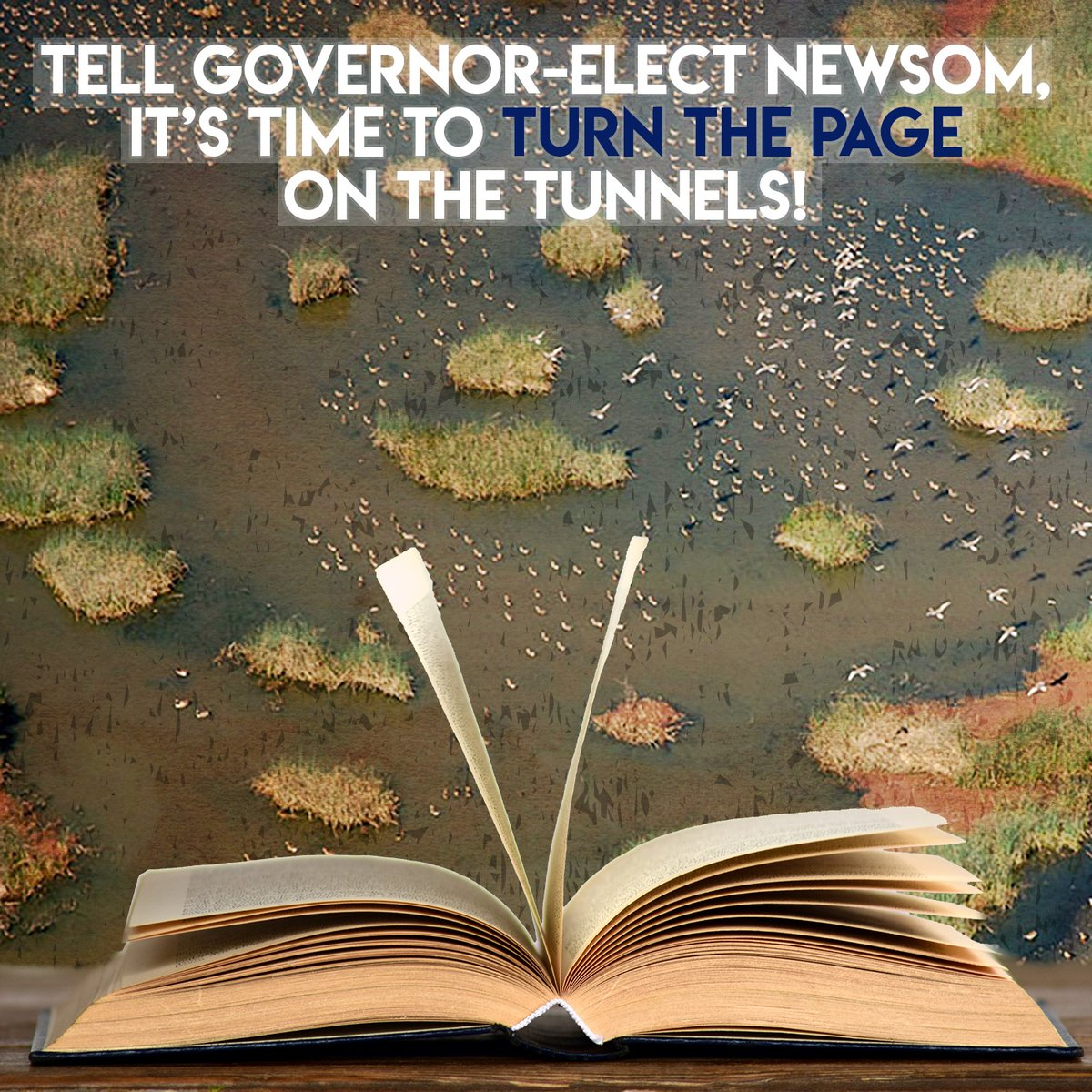Delta stewardship council nixes Delta Tunnels