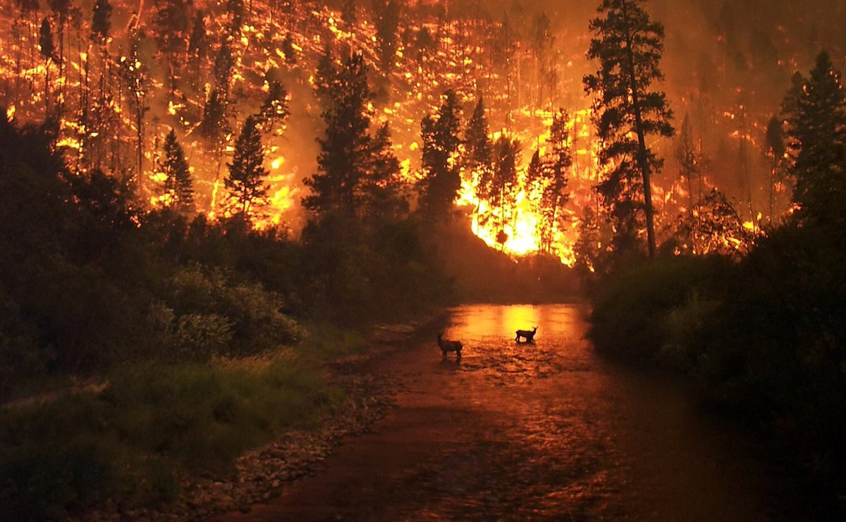 climate change leading to more california wildfires