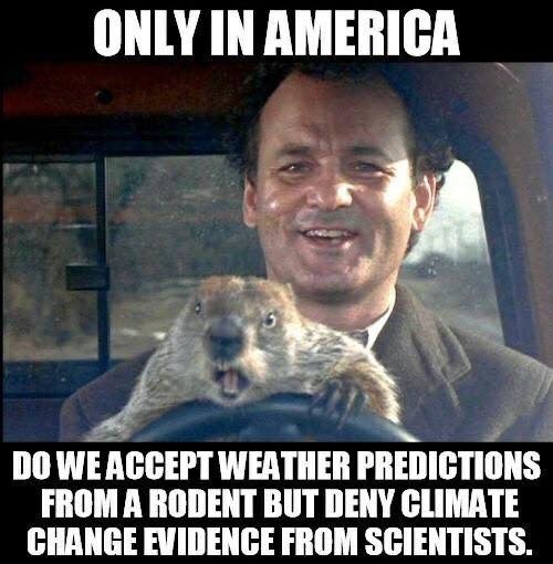 Groundhog Day: Only in America do we accept weather predictions from animals but deny climate change warnings from scientists