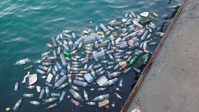single-use plastic waste - most never gets recycled