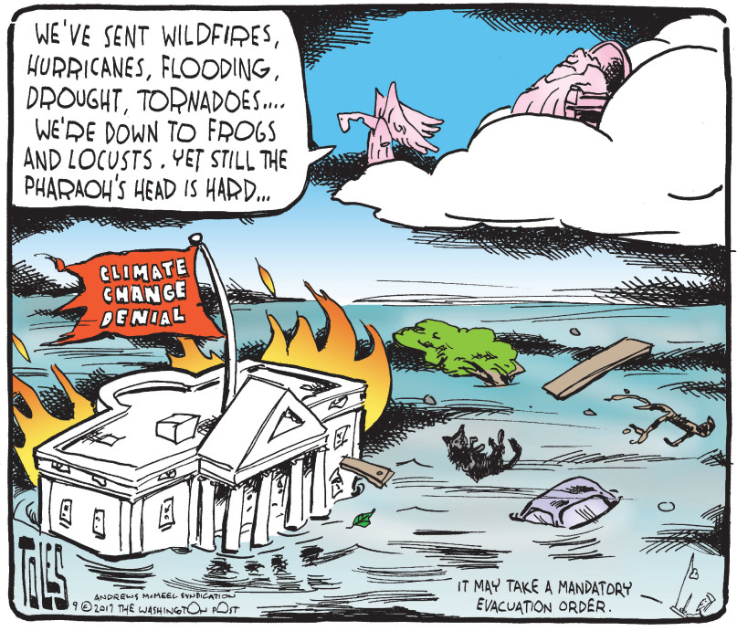 climate change denial: flood, wildfire, hurricane, drought