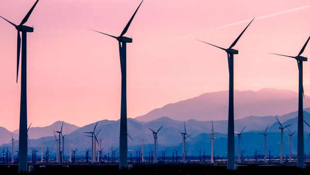 San Gorgonio Pass Wind Farm. Photo by Ian D. Keating/Flickr