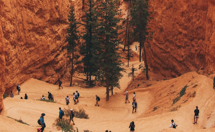 Utah's Bryce Canyon National Park hosted more than 2.5 million visitors in 2019. Anqi Lu/Unsplash, CC BY