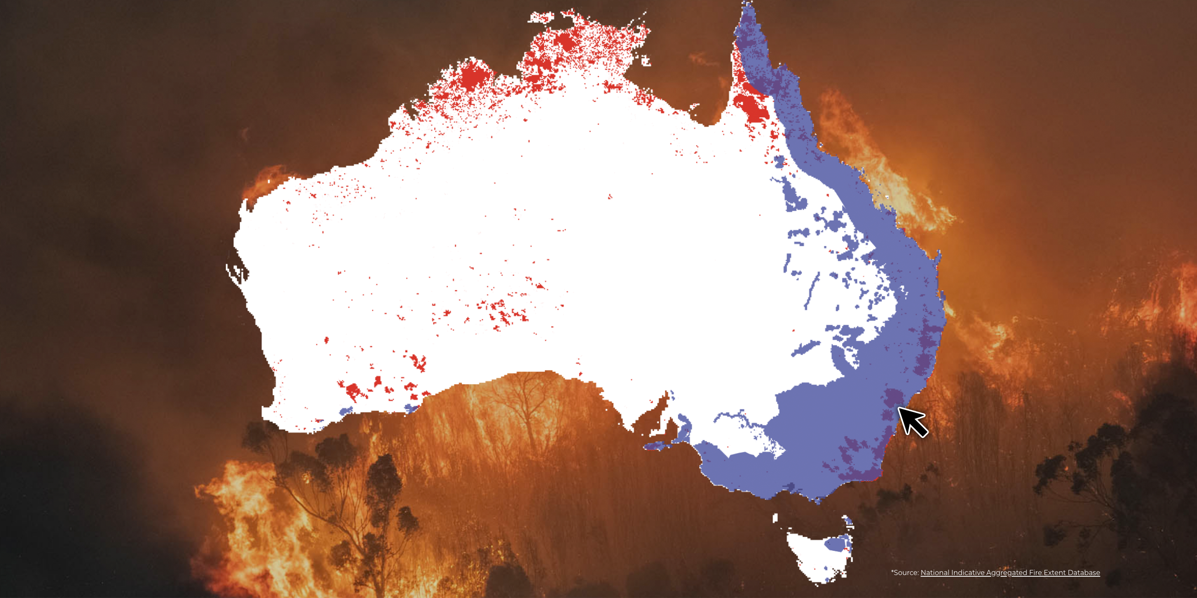 Australia data Summer bushfires: how are the plant and animal survivors 6 months on?