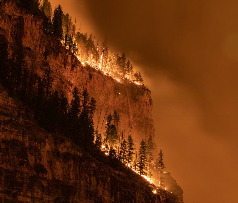 wildfire 2020