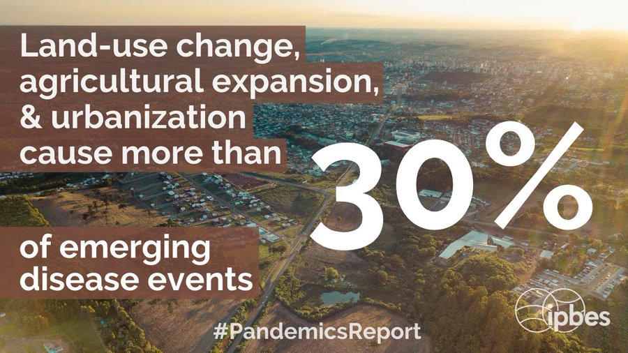 """""""Ecological restoration, which is critical for #conservation & #climate adaptation should integrate health considerations to avoid potential increased disease risk resulting from increased human-livestock-#wildlife contact""""Microbe — @IPBES #PandemicsReport"""