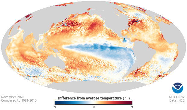 Global sea surface temperature differences from average for November 2020. Red and orange areas were warmer than average, and blue areas were cooler than average. Ocean temperatures in November 2020 were warmer than average across much of the planet except the tropical Pacific Ocean where a La Niña is present. Climate.gov image using data from the National Centers for Environmental Information.