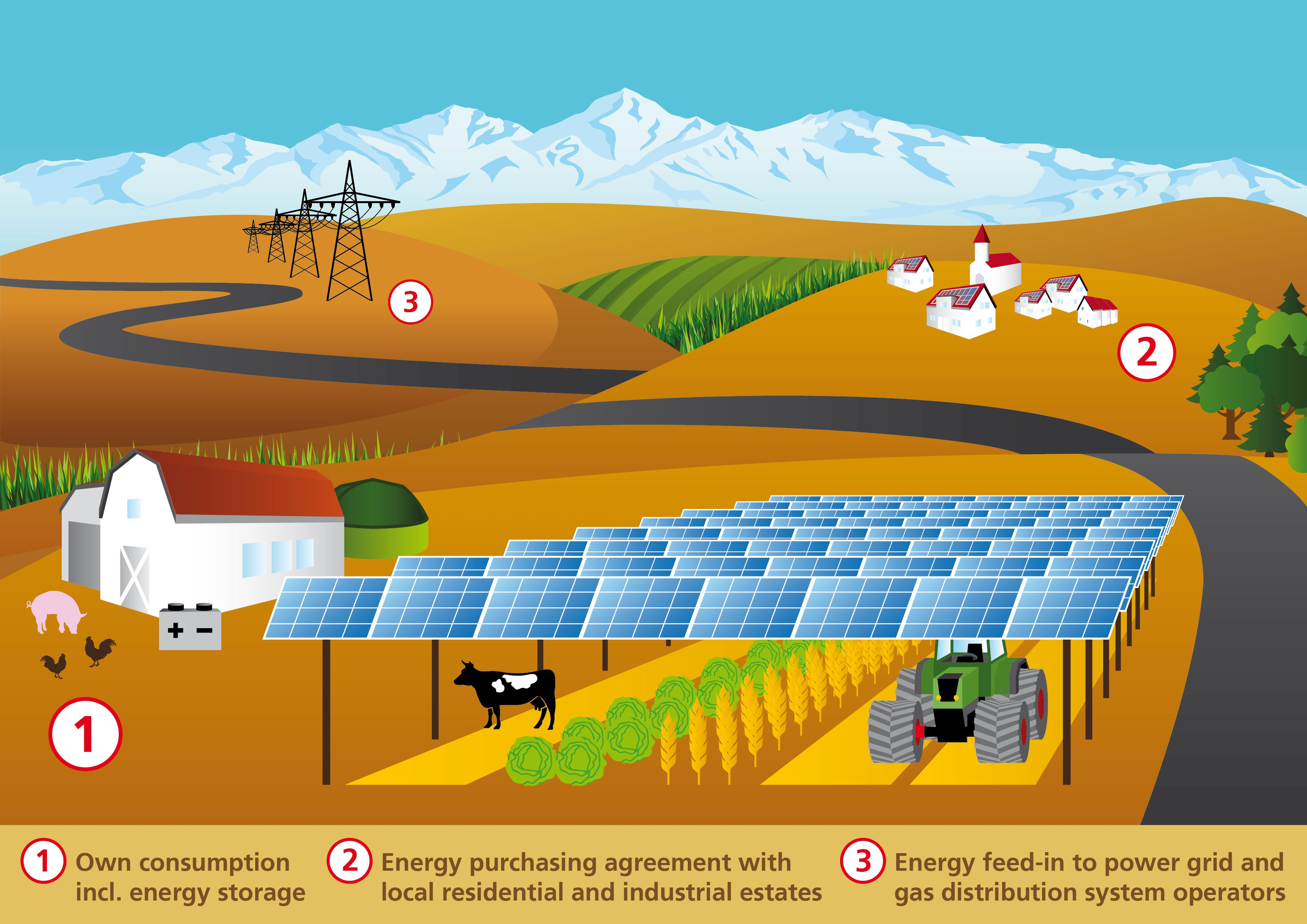 solar panels and agriculture