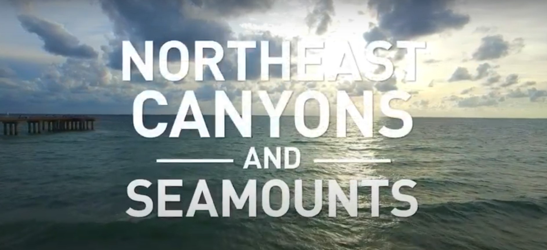 Northeast Seamounts and Canyons National Monument